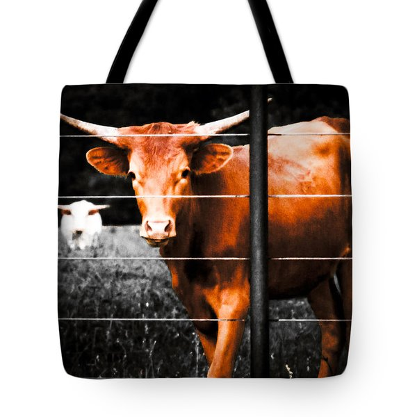 Longhorn Curiosity Tote Bag
