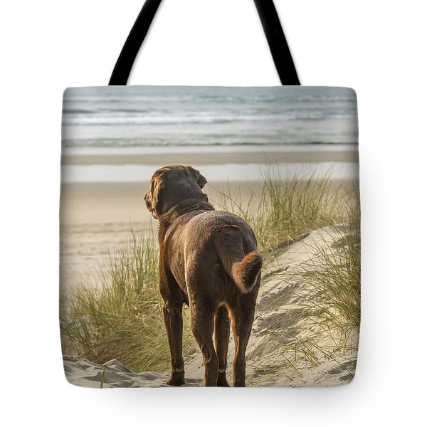 Longing Tote Bag by Jean Noren