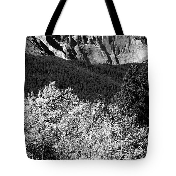 Longs Peak 14256 Ft Tote Bag by James BO  Insogna