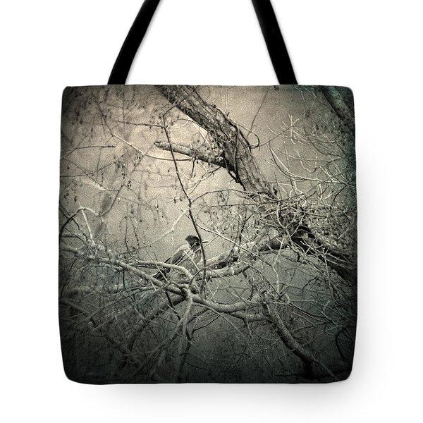 Lontano Tote Bag by Taylan Apukovska