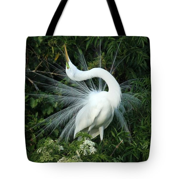 Tote Bag featuring the photograph Look At Me by Sabrina L Ryan