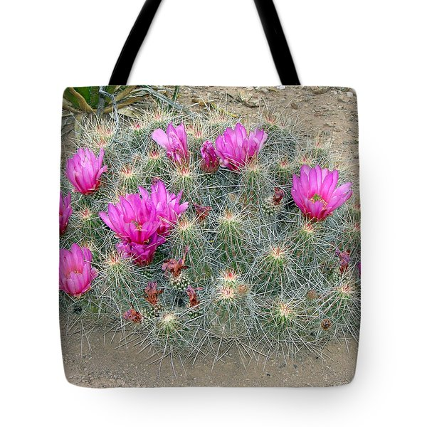 Tote Bag featuring the photograph Look But Don't Touch by Linda Cox