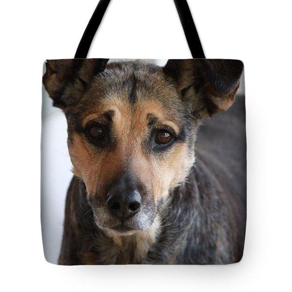 Look In To Her Big Brown Eyes Tote Bag