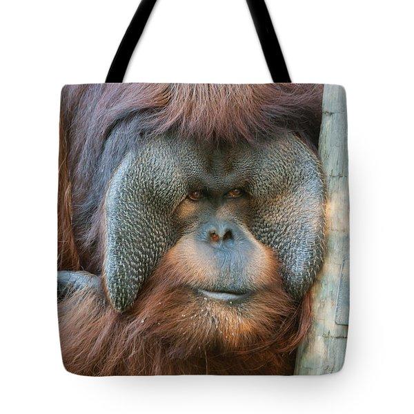 Look Into My Eyes Tote Bag by Tim Stanley