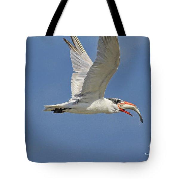 Look What I Got Tote Bag by Deborah Benoit