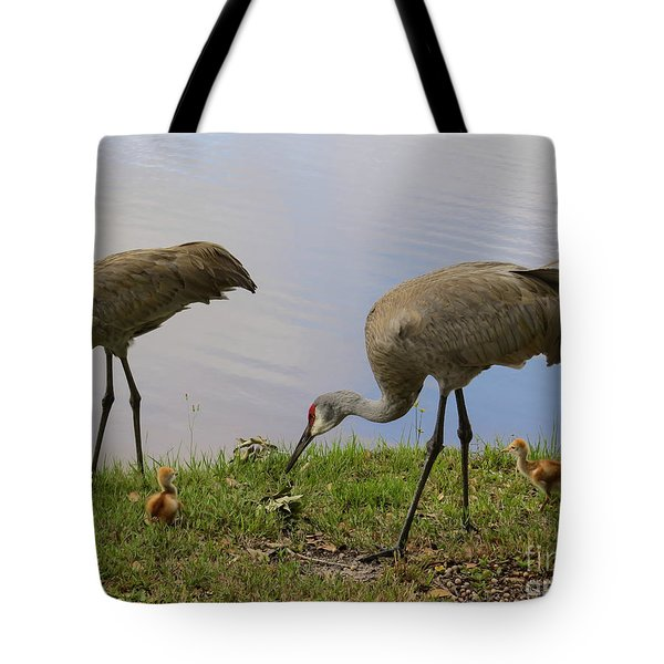 Looking Around Tote Bag by Zina Stromberg