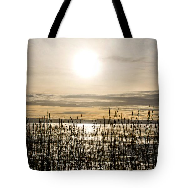 Looking At Wales Through The Grass Tote Bag