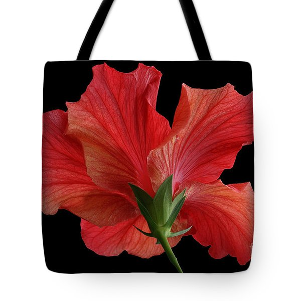 Tote Bag featuring the photograph Looking Back by Judy Whitton