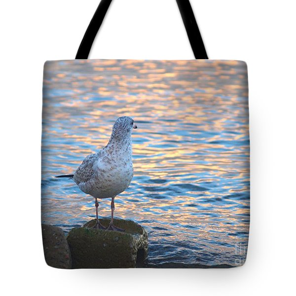 Looking Back Tote Bag by Susan  Dimitrakopoulos