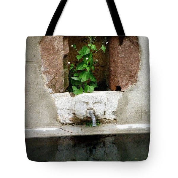 Looking Deeper Tote Bag by Lainie Wrightson