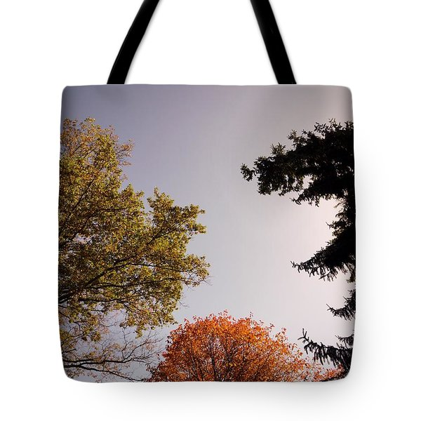 Tote Bag featuring the photograph Looking Down On Us by Photographic Arts And Design Studio