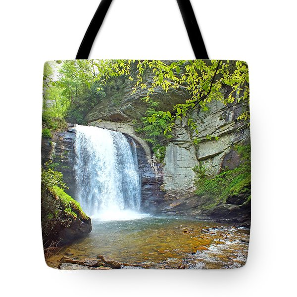 Looking Glass Waterfall In The Spring 2 Tote Bag