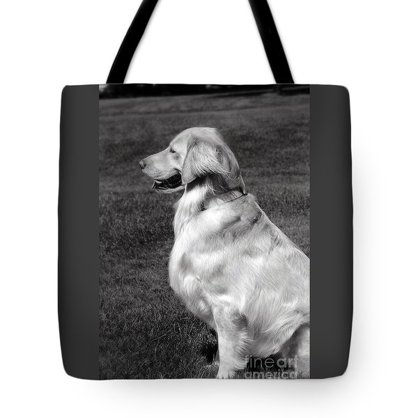 Looking Golden Tote Bag