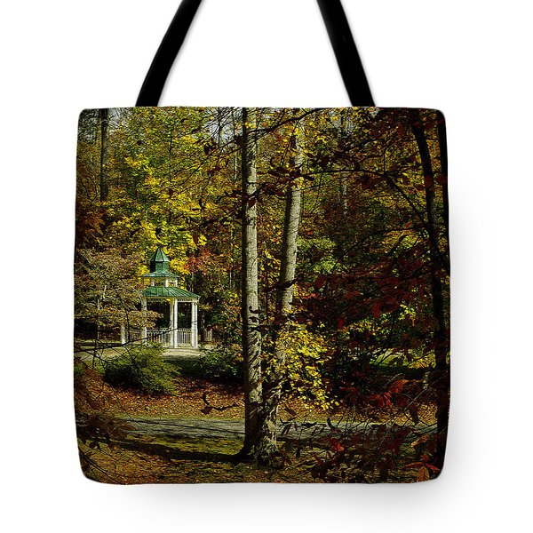Tote Bag featuring the photograph Looking Into Fall by James C Thomas