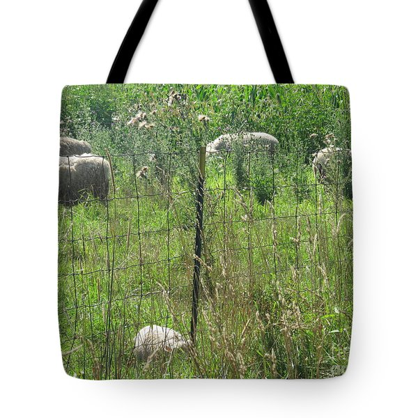 Tote Bag featuring the photograph Looking My Way by Tina M Wenger