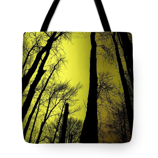Looking Through The Naked Trees  Tote Bag by Jeff Swan