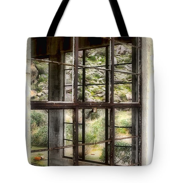 Looking Through The Window By Diana Sainz Tote Bag