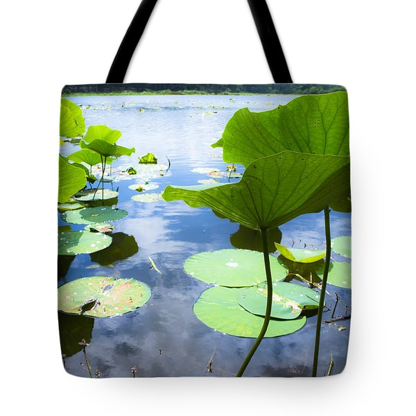 Looking Toward The Sun Tote Bag