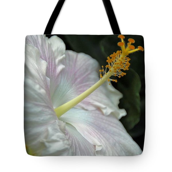 Looking Up Tote Bag by Cindy Manero