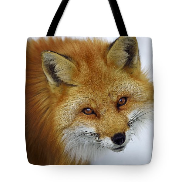 Looking Up Tote Bag by Tony Beck