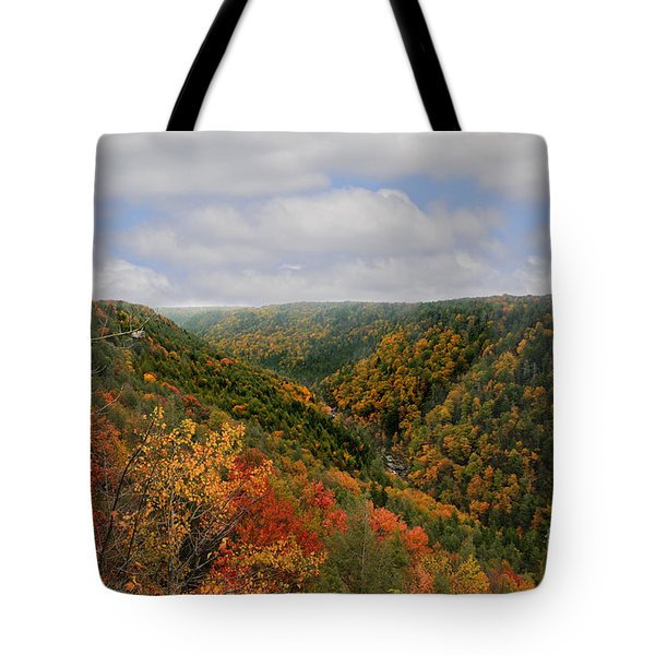 Looking Upriver At Blackwater River Gorge In Fall From Pendleton Point Tote Bag by Dan Friend