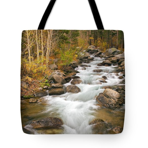 Looking Upstream Tote Bag by Alice Cahill