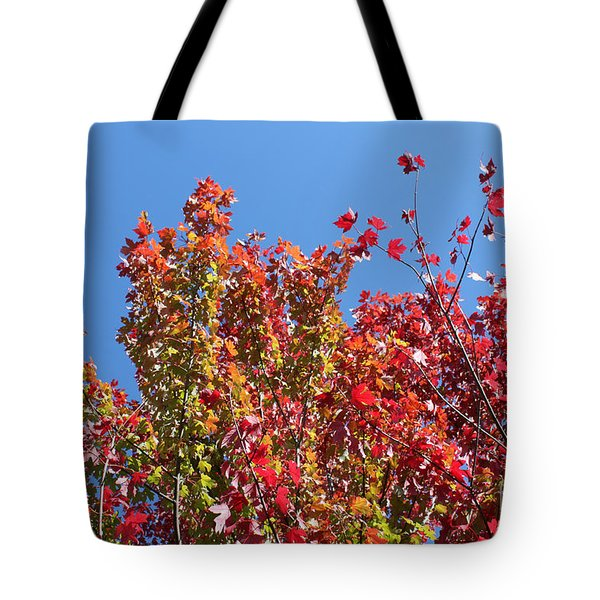 Tote Bag featuring the photograph Looking Upward by Debbie Hart