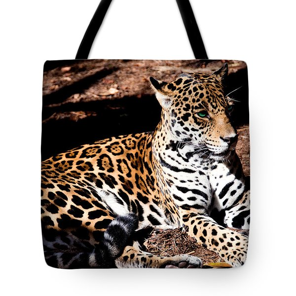 Looks Are Deceiving Tote Bag
