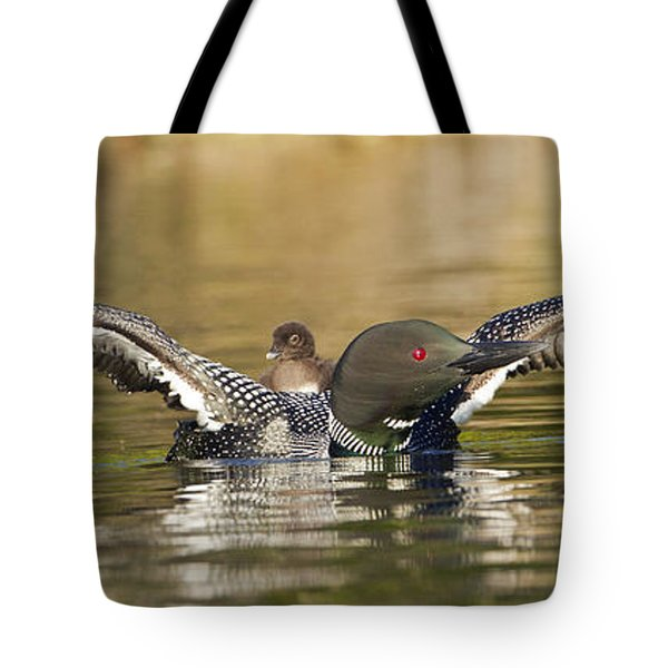 Loon Chick Hold On Tote Bag