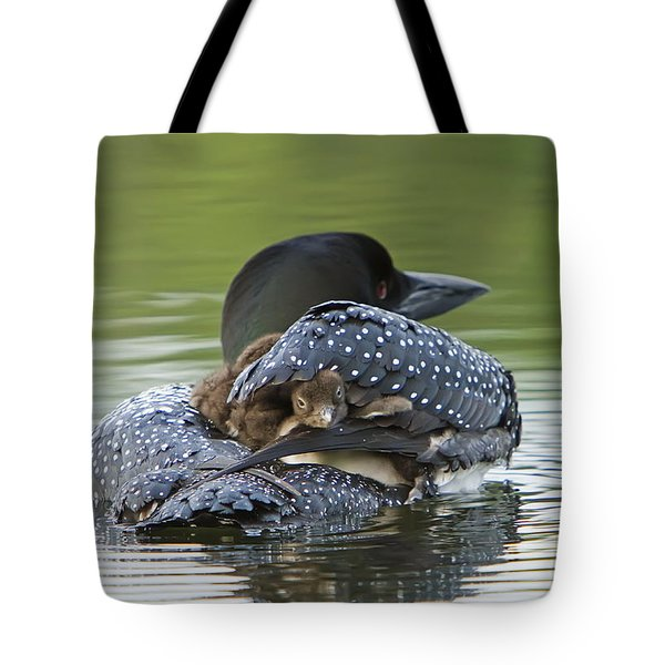 Loon Chick - Peek A Boo Tote Bag