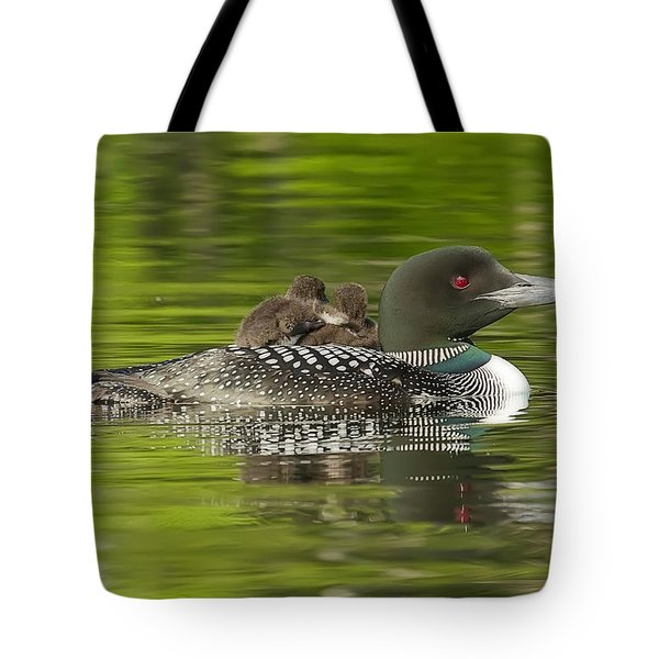 Loon Chicks - Best Buddies Tote Bag