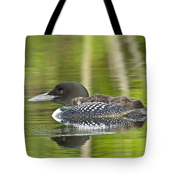 Loon Family Nap Time Tote Bag