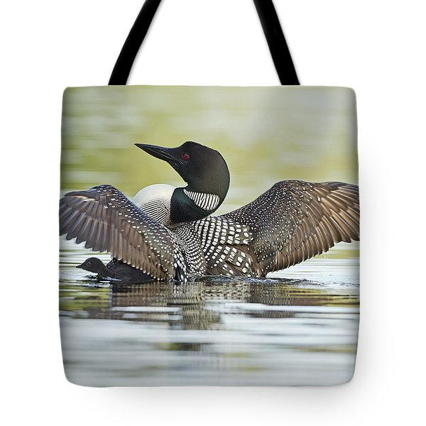 Loon Wing Spread With Chick Tote Bag