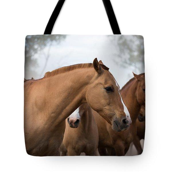 Los Caballos De La Estancia Tote Bag