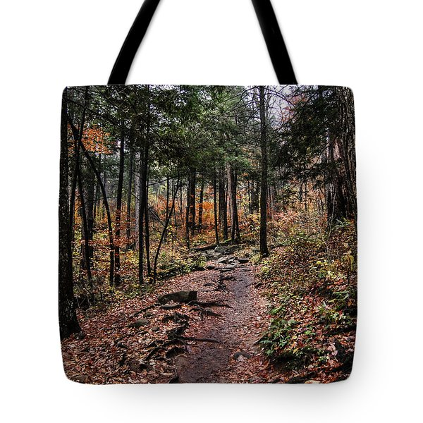 Tote Bag featuring the photograph Lost In Thought On The Blue Ridge Parkway Trail by Debbie Green