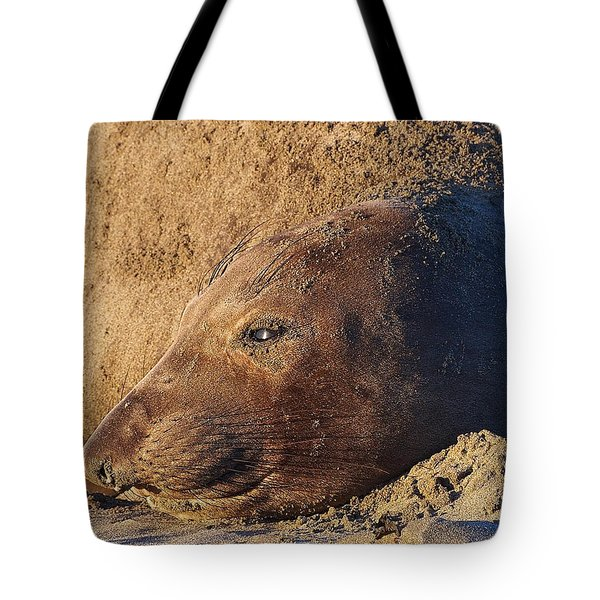 Lost In Thought Tote Bag