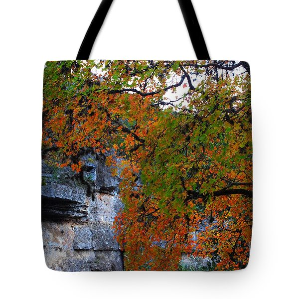 Fall Foliage At Lost Maples State Natural Area  Tote Bag