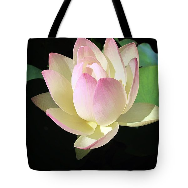 Lotus 9 Tote Bag by Dawn Eshelman