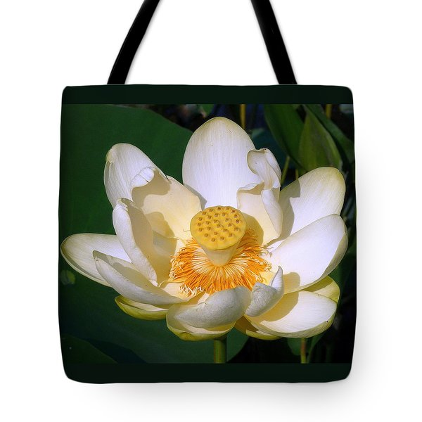 Tote Bag featuring the photograph Lotus Blossom # 1 by Jim Whalen