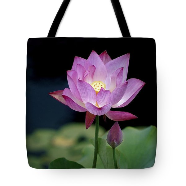 Tote Bag featuring the photograph Lotus Blossom by Penny Lisowski