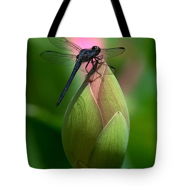 Tote Bag featuring the photograph Lotus Bud And Slatey Skimmer Dragonfly Dl006 by Gerry Gantt