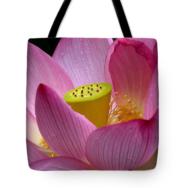 Lotus-center Of Being II Dl030 Tote Bag by Gerry Gantt