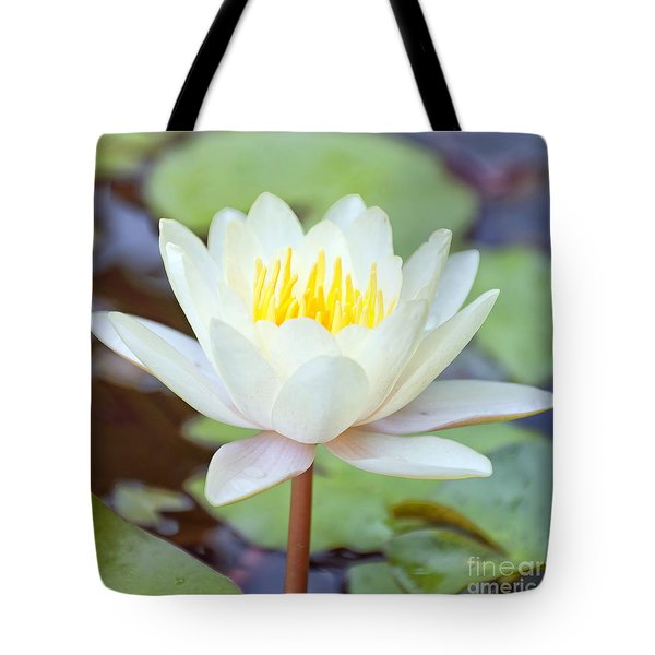 Lotus Flower 02 Tote Bag