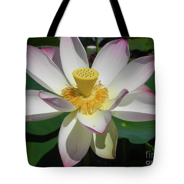 Tote Bag featuring the photograph Lotus Flower by Chrisann Ellis