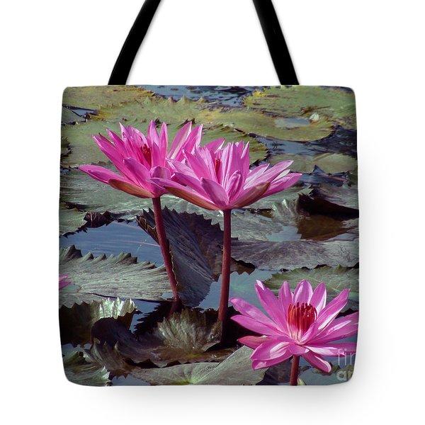 Lotus Flower Tote Bag by Sergey Lukashin