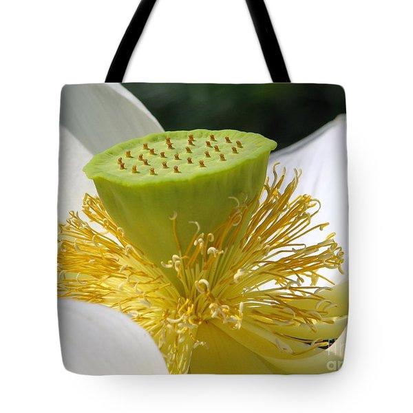 Lotus Flower With Pod Tote Bag by Eva Kaufman