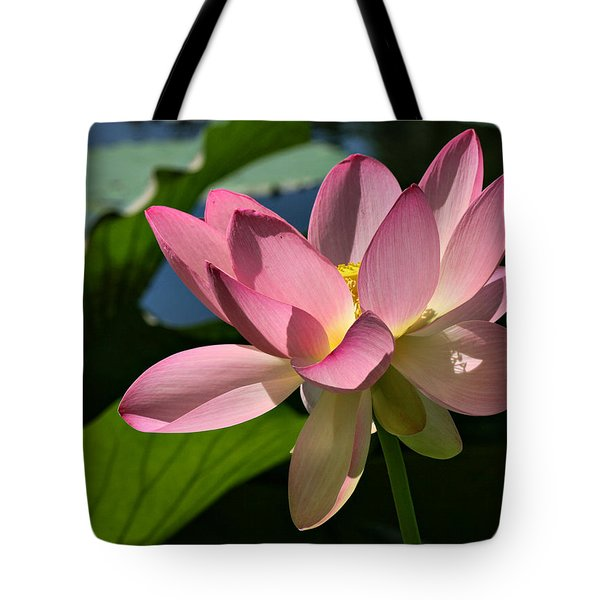 Lotus - Flowers Tote Bag