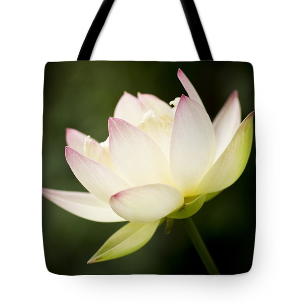 Lotus Glow Tote Bag