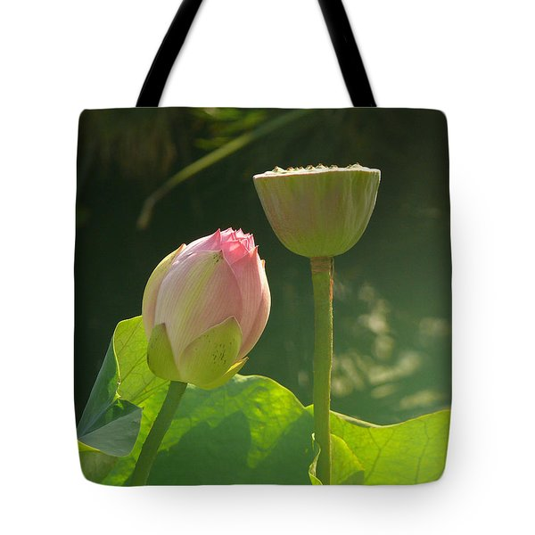 Tote Bag featuring the photograph Lotus Soft by Evelyn Tambour