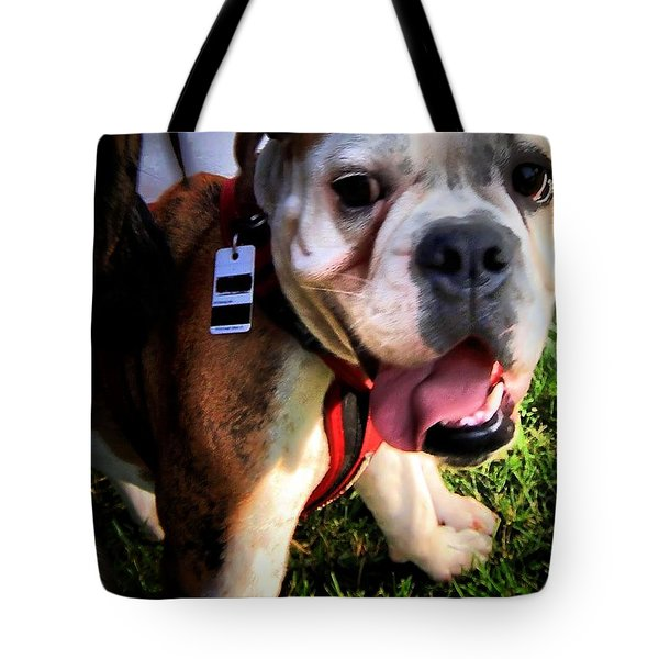 Tote Bag featuring the photograph Loubird by Robert McCubbin